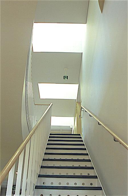 NEWベルフラワー2階-1