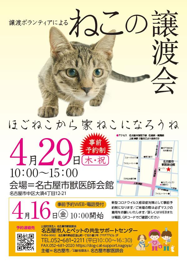 poster_2021041918481189f.jpg