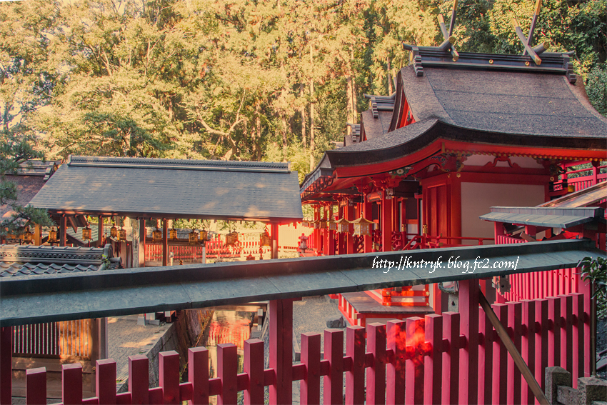 枚岡神社 照沢池とご本殿