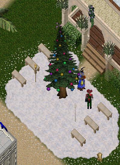 20201206_magincia_tree.png