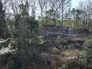 正面から見た城壁跡