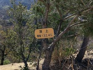 永納山山頂