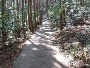 常石山の坂道