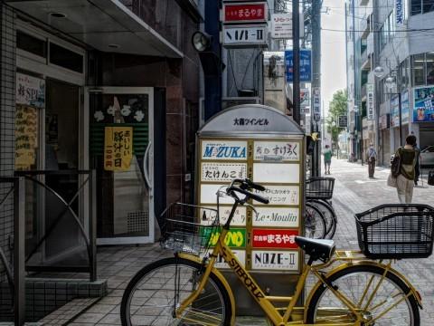 gingermaruyama01.jpg