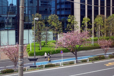 joyakiogawa10.jpg