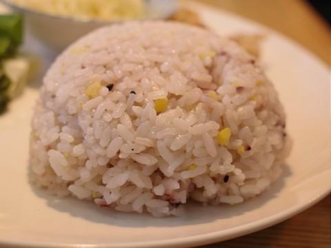 lunchnekofuji11.jpg