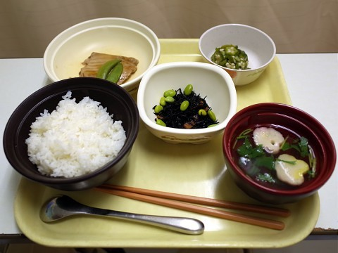lunchnekofuji22.jpg
