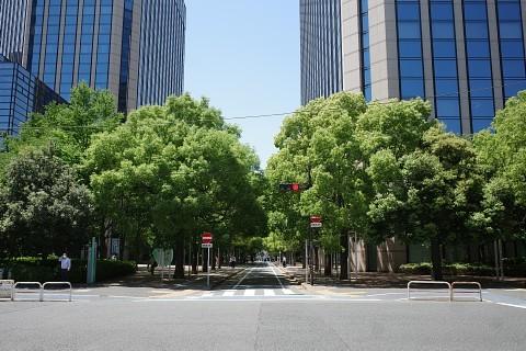 oomoritogo46.jpg