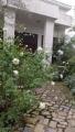 HORIZON_0001_BURST20201022134600155_COVER.jpg