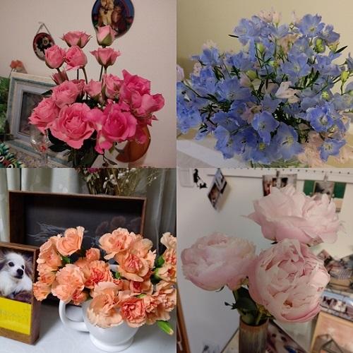 202005花