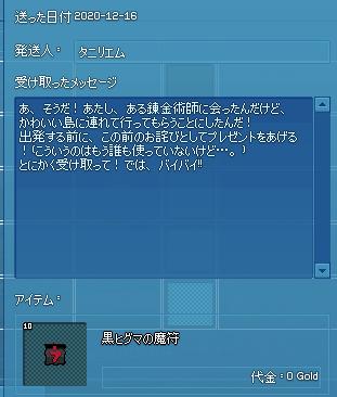 mabinogi_2020_12_16_012007.png