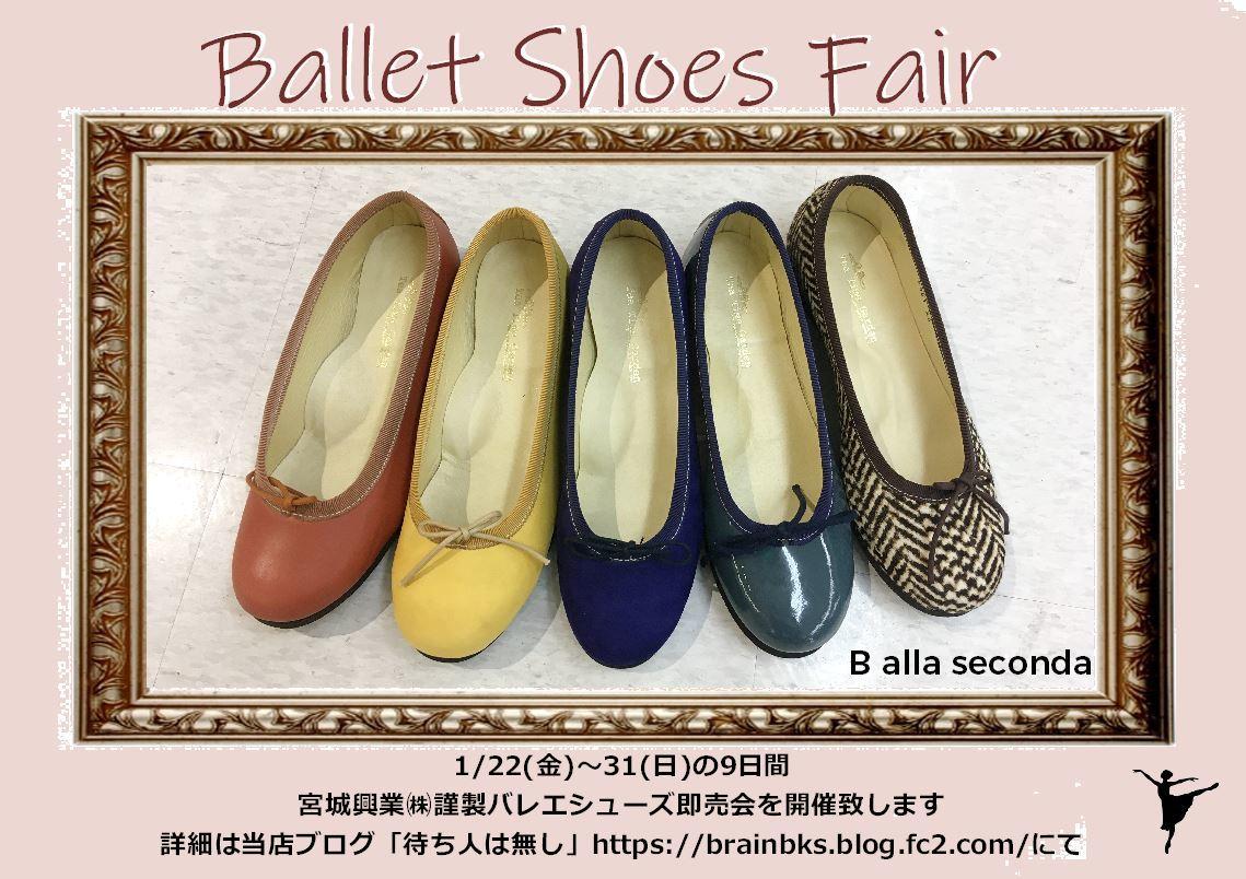 ballet_shoes_fair.jpg