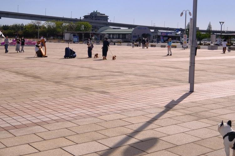 200524d3.jpg