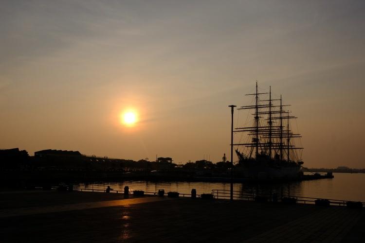 200814b1.jpg