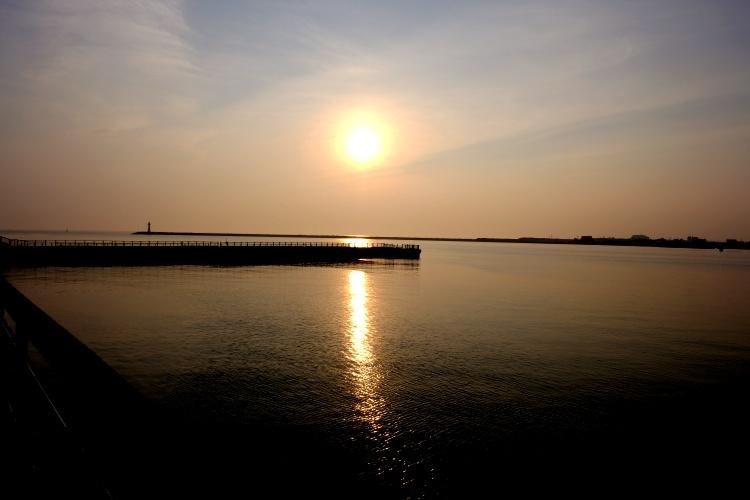 200814b5.jpg