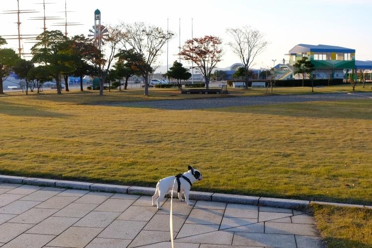 201130b1.jpg
