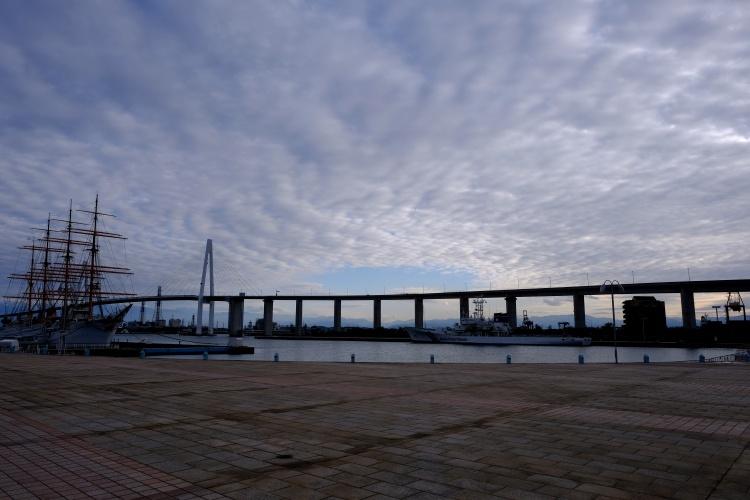 201207b1.jpg