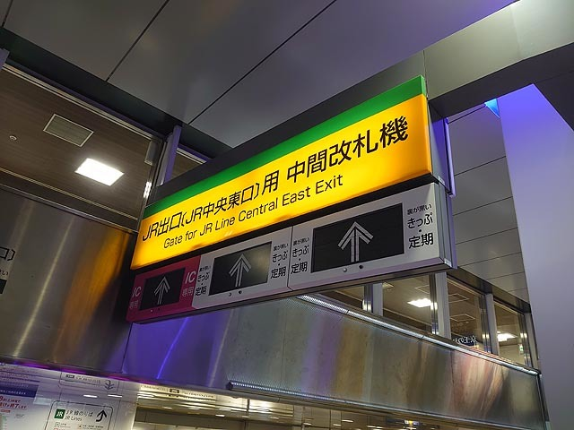 kai-DSC_5052.jpg