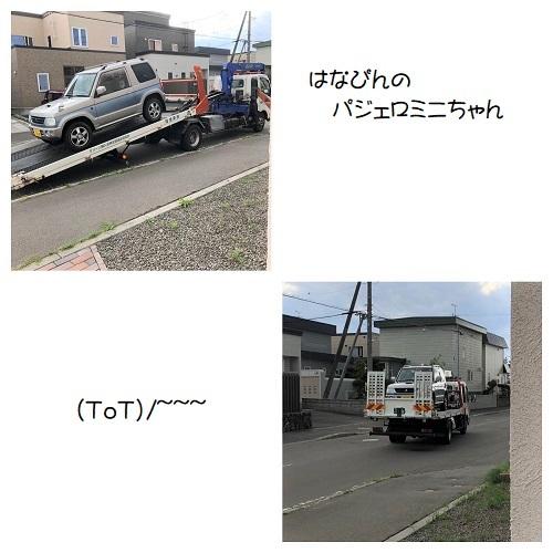 C20200919IMG_8573.jpg