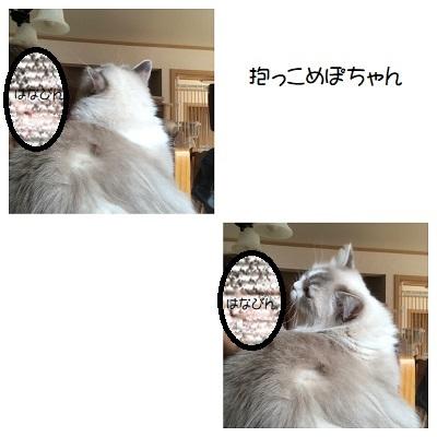 C20201001IMG_9144.jpg