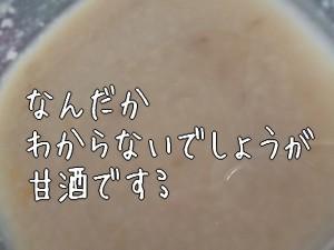 2005071.jpg