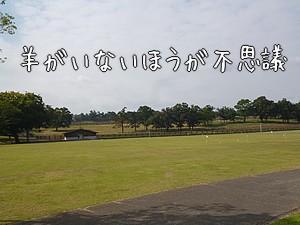 2010142.jpg