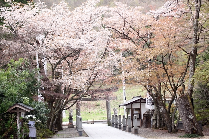 IMG_4744秋保大滝