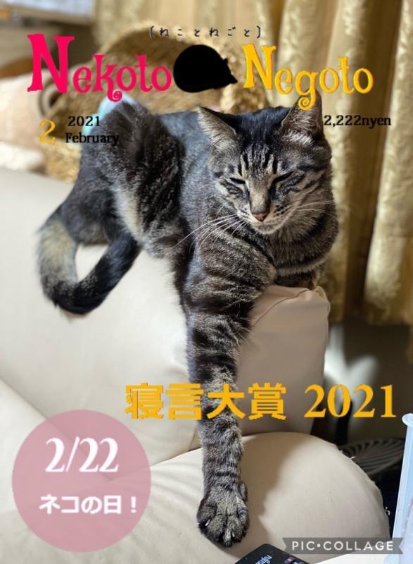 fc2blog_202102181953200b0.jpg