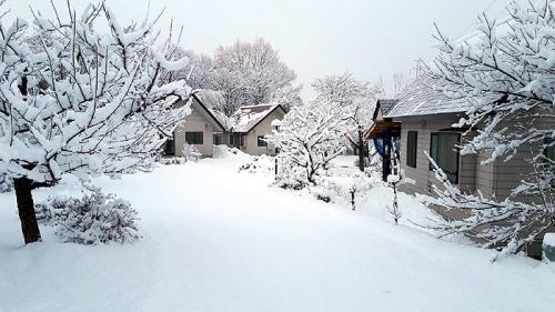 20200308降雪