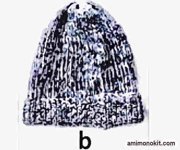 ピエロ棒針編み手編み無料編み図サマーニット帽2