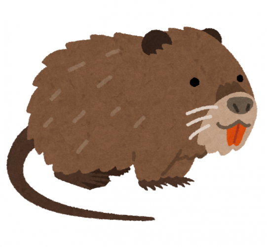 animal_nutria.png