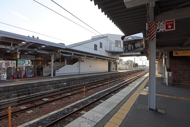 20200202_hashimoto-02.jpg