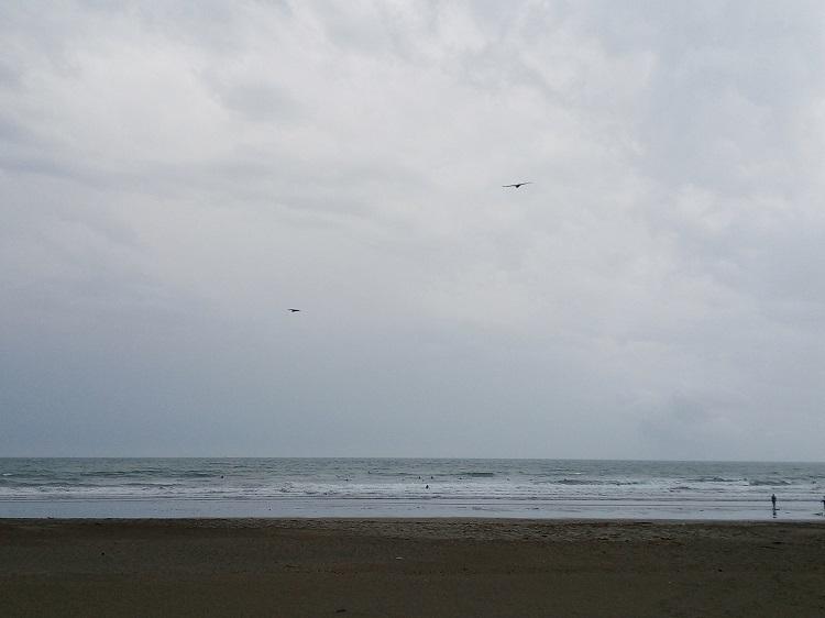 砂浜サーフィン