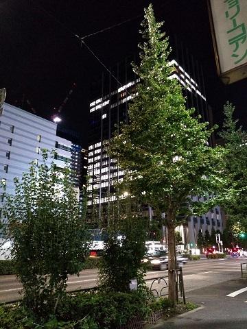 東京2020年09月