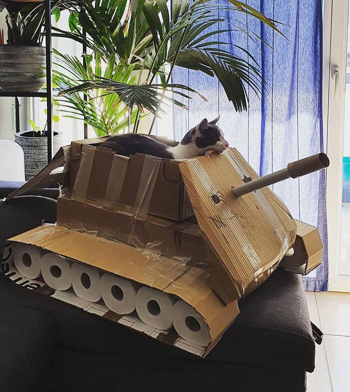 quarantined-owners-build-cardboard-cat-tanks-5eaa7dc030eba-png__700.jpg