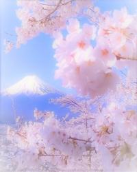 年賀状 富士山2 (2)