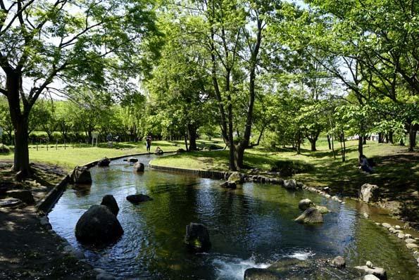 20200510 水辺公園 21㎝_DSC2524