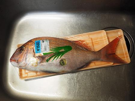 天然鯛の松皮つくり023