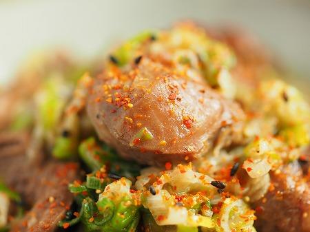 砂肝と鶏ハツのねぎ塩炒め020