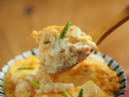 豆腐の卵とじ丼032