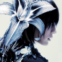 Don't Call Me - The 7th Album [Jewel Case Ver.] (MINHO Ver.)