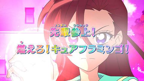 【トロピカル~ジュ!プリキュア】第04話:APPENDIX-07