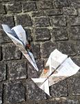 紙飛行機飛ばし (1)