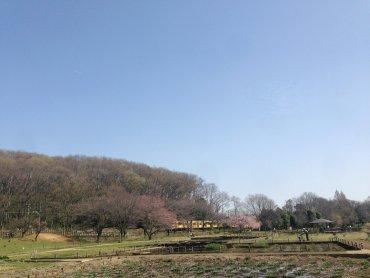 武蔵野200322