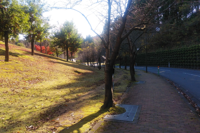 201122_1240500012.jpg