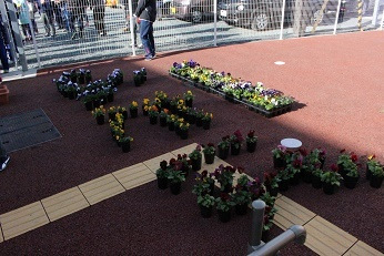 花植えIMG_6391