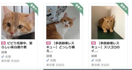 yuusuke.jpg