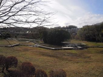 厳島湿性公園201226