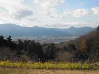 富士山の左に矢倉岳201226