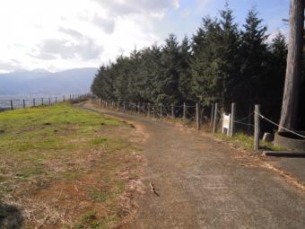 この道を下る201226